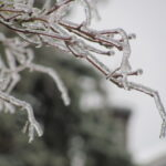 from the February ice storm